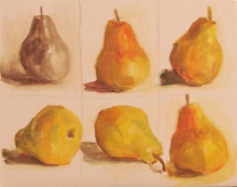 Quick study pears