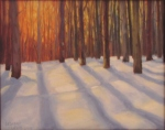 Snowy Maine Woods