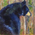 Bear's Contemplation