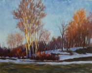 Early Spring Thaw and Birches