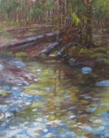 Juneau Woodland stream SOLD at Craft fair 10x8